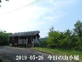 2019-05・26 今日の里山模様・・・ (2).JPG