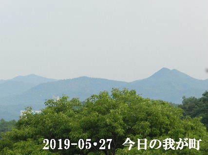 2019-05・27 今日の我が町.JPG