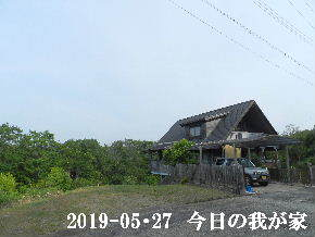 2019-05・27 今日の里山模様・・・ (1).JPG