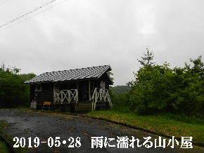2019-05・28 今日の里山模様・・・ (2).JPG