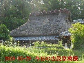 2019-05・29 今日の古民家模様 (2).JPG