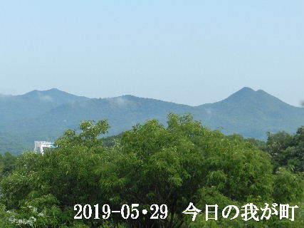 2019-05・29 今日の我が町.JPG