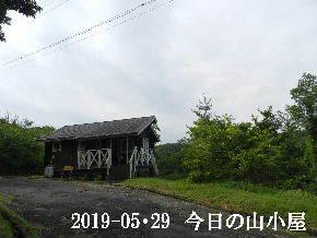 2019-05・29 今日の里山模様・・・ (2).JPG