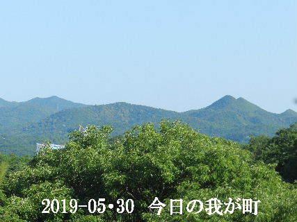 2019-05・30 今日の我が町.JPG
