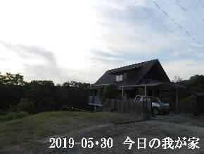 2019-05・30 今日の里山模様・・・ (1).JPG