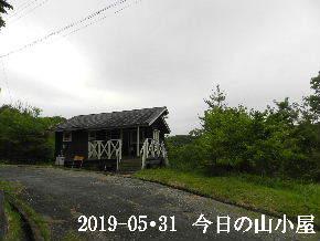 2019-05・31 今日の里山模様・・・ (2).JPG