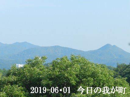 2019-06・01 今日の我が町.JPG