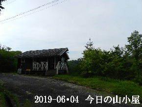 2019-06・04 今日の里山模様・・・ (2).JPG