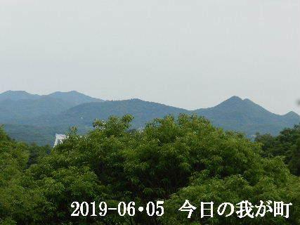 2019-06・05 今日の我が町.JPG