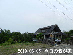 2019-06・05 今日の里山模様・・・ (1).JPG