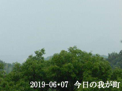 2019-06・07 今日の我が町.JPG