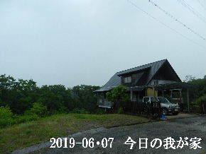 2019-06・07 今日の里山模様・・・ (1).JPG