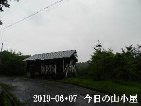 2019-06・07 今日の里山模様・・・ (2).JPG