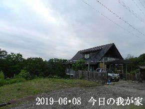 2019-06・08 今日の里山模様・・・ (1).JPG