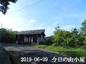 2019-06・09 今日の里山模様・・・ (2).JPG