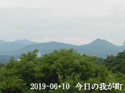 2019-06・10 今日の我が町.JPG