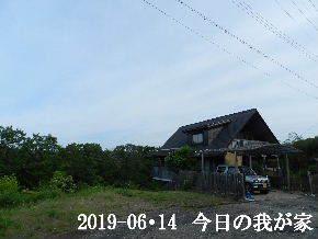 2019-06・14 今日の里山模様・・・ (1).JPG