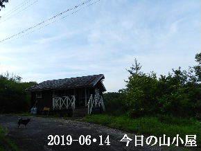 2019-06・14 今日の里山模様・・・ (2).JPG