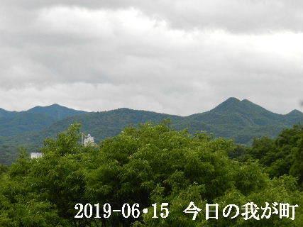 2019-06・15 今日の我が町.JPG