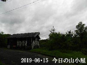 2019-06・15 今日の里山模様・・・ (2).JPG