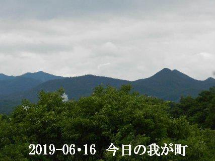 2019-06・16 今日の我が町.JPG