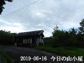 2019-06・16 今日の里山模様・・・ (2).JPG