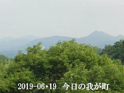 2019-06・19 今日の我が町.JPG