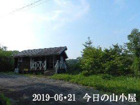 2019-06・21 今日の里山模様・・・ (2).JPG
