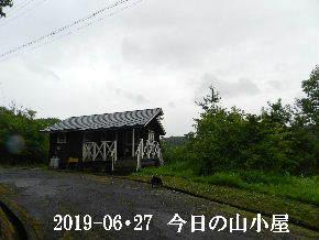 2019-06・27 今日の里山模様・・・ (2).JPG