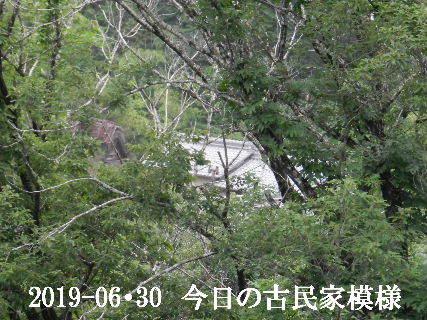 2019-06・30 今日の古民家模様.JPG