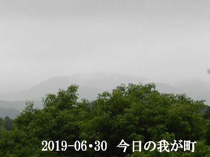2019-06・30 今日の我が町.JPG