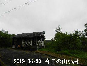2019-06・30 今日の里山模様・・・ (2).JPG
