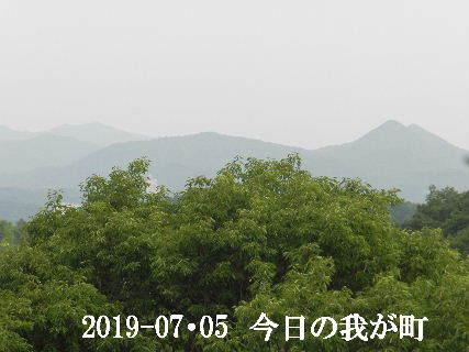 2019-07・05 今日の我が町.JPG