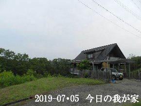 2019-07・05 今日の里山模様・・・ (1).JPG