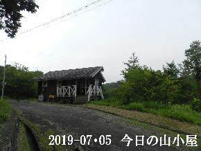 2019-07・05 今日の里山模様・・・ (2).JPG