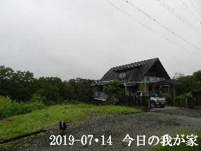 2019-07・14 今日の里山模様・・・ (1).JPG