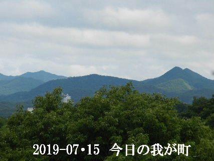 2019-07・15 今日の我が町.JPG