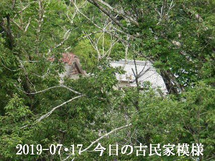 2019-07・17 今日の古民家模様.JPG