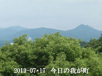 2019-07・17 今日の我が町.JPG