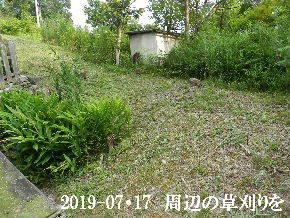 2019-07・17 周辺の草刈りを (1).JPG
