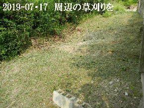 2019-07・17 周辺の草刈りを (4).JPG