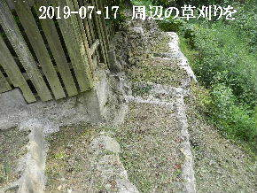 2019-07・17 周辺の草刈りを (5).JPG