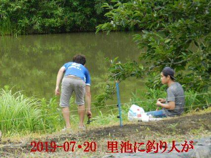 2019-07・20 今日の出遭い・・・ (5).JPG