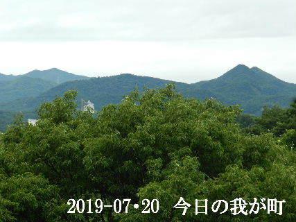 2019-07・20 今日の我が町.JPG