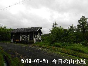 2019-07・20 今日の里山模様・・・ (2).JPG