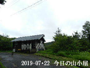 2019-07・22 今日の里山模様・・・ (2).JPG