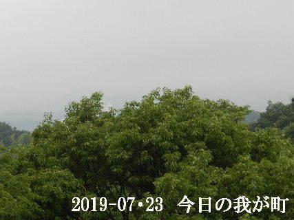 2019-07・23 今日の我が町.JPG