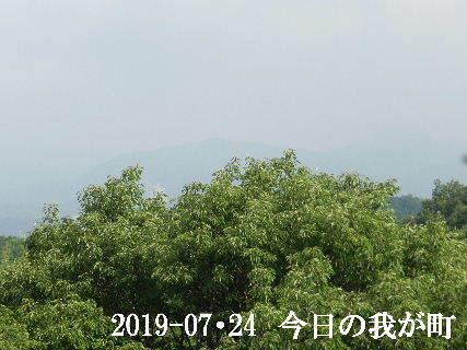 2019-07・24 今日の我が町.JPG