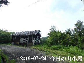 2019-07・24 今日の里山模様・・・ (2).JPG