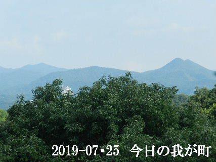 2019-07・25 今日の我が町.JPG